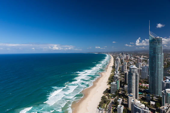 Looking to move to the Gold Coast.  Any Homes Realty can help!